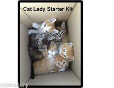 Funny Crazy Cat Lady Starter Kit  Refrigerator / File Cabinet Magnet