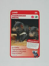 Woolworths Aussie Animals Baby Card -24 Tasmanian Devil