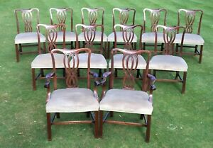 12 Dining chairs, Chippendale style, reproduction