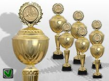 Big 6er trofeos pokalserie Golden Supreme con grabado favorables trofeos comprar Top