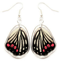 Hestina assimilis red pink butterfly wing earrings