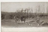 Shire Horses, Ploughing Postcard, B382