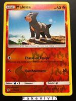 Carte Pokemon MALOSSE 45/214 REVERSE Soleil et Lune 8 SL8 FR NEUF