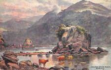 More details for br62723 colleen bawn rock killarney  cow vaches postcard  ireland