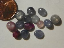 Blue Star Sapphire And Reddish 14 Pieces 25.23 Carats Total Weight