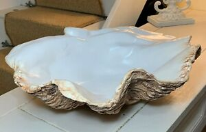 Giant clam Shell Sculpture Contemporary Bowl In Cigar Brown Hand Finished Art