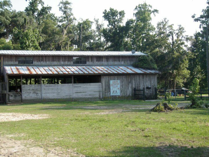 Sawhorse Farm LLC