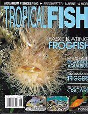 Tropical Fish Magazine Frogfish Planted Aquarium Crosshatch Triggers Oscar Care