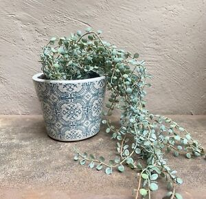 Artificial Potted String of Pearls, Faux Senecio Succulent Trailing House Plant