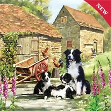 NEW 1000 pc Jigsaw Puzzle Border Collie & Puppies Great Dog Lover Gift FREE P&P