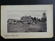 Kent: Shipbourne Village c1910 showing cows in field and church - Old Postcard