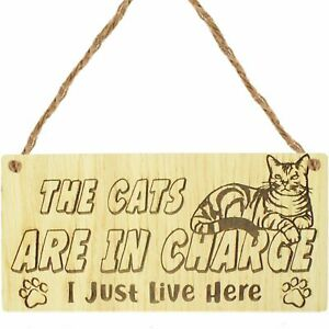 Oak Funny Cat Gifts For Cat Lovers Gift For Women Home Decor Animal Sign Pet