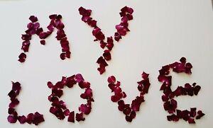 Freeze Dried Rose Petals 50 cups NATURAL petals burgundy.