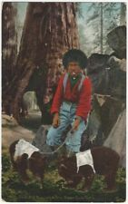1910 Young Indian Boy with Bear Cubs by Sequoia Tree Vintage Postcard