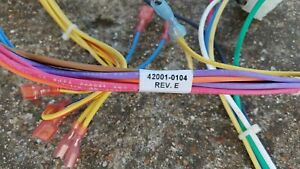 PENTAIR MASTERTEMP 400 complete replacement wiring harness. # 42001-0104
