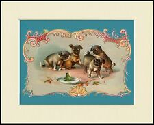 PUG LITTLE DOGS AND GREEN FROG LOVELY DOG PRINT MOUNTED READY TO FRAME