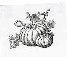 Pumpkin Scene UnMounted rubber Fabulous for Thanksgiving, Harvest  & Fall