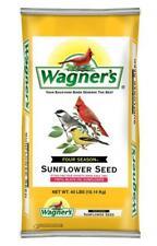 Wild Bird Woodpeckers Food Bag Four Season Sunflower Seed 100% Black Oil Healthy