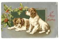 Dog Postcard A Merry Christmas Spaniel Puppies + Holly 1907