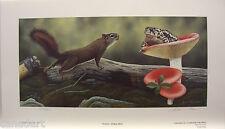 Glenn OLSON Squirrel & Toad  LTD art print  mint Certificate COA