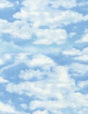 Nature Fabric - C4954 Sky and Clouds Blue - Timeless Treasures YARD