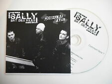 SALLY BAT DES AILES : COMMENT FAIRE [ CD PROMO ] ~ PORT GRATUIT !