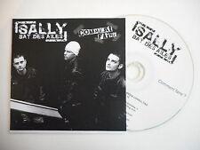 SALLY BAT DES AILES : COMMENT FAIRE [ CD PROMO ] ~ PORT GRATUIT !