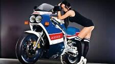 Suzuki RGV 250 K/L 89/90 top fairing road or race