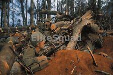 Vietnam War Photo US Marines  at the Battle of Hue 554