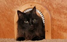 New Cathole Wooden Pet Door For Cats With Removeable Cleaning / Grooming Brush!