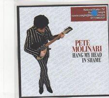 (FD189) Pete Molinari, Hang My Head In Shame - 2014 DJ CD