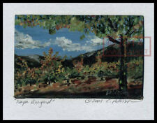 Napa Vineyard Vines + trees = Signed ART PRINT = Cathy Peterson = LISTED ARTIST