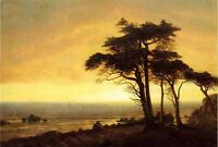 Beautiful Oil painting landscape California Coast trees with sunrise canvas 36""