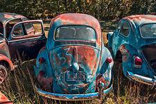 "VW Volkswagen Bug Beetle Junkyard Art Poster Print - 24""x36"" !"