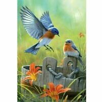 5D Full Drill Robin Bird Diamond Painting Embroidery Cross Stitch Kit Gift Decor