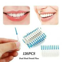 120X Dual Toothpick Oral Interdental Cleaner Teeth Floss Dental Gum Brush Newly