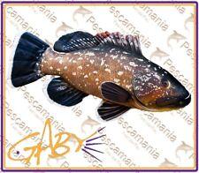 cuscino CERNIA idea regalo pesca pescatore peluche Gaby pillow 90cm