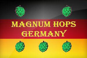 Magnum Hops - Hallertau Magnum - Multiple Weights - T90 Hop Pellet - Sameday P&P