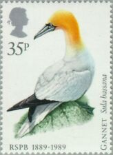 GREAT BRITAIN -1989- Northern Gannet (Morus bassanus) - MNH Stamp - Scott #1242