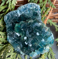 87g NATURAL TRANSPARENT DEEP GREEN CUBIC FLUORITE MINERAL CRYSTAL SPECIMEN - USA