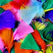 Colour Feathers 50g - Assorted Large Pack