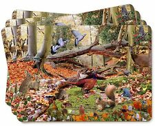 Woodland Forest Wildlife Animals Picture Placemats in Gift Box, AB-50P