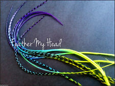 Tie Dye Fade Feather Extensions Real Grizzly Rooster Feathers In Bright Colors
