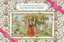 Le petit calendrier perpétuel des fleurs de nos jardins - Dominique Foufelle
