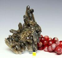 Large Black Quartz / Morion / Cairngorm Crystal Cluster - Himalayan Tibet 728g