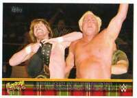 2016 Topps WWE Road to Wrestlemania Rowdy Roddy Piper Tribute #10 Tag Team Ric F