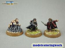 25mm Warhammer LOTR WGS painted Gollum, sam & frodo (Ithilien) THE001 A1