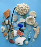 Surf-Tumbled Beach Find Mix-CORAL Pottery SEA GLASS China Shells DRIFTWOOD LBFM5