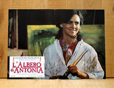L'ALBERO DI ANTONIA fotobusta poster affiche Els Dottermans Antonia's Line O30