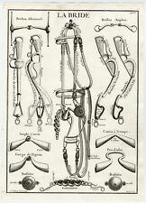 3 Antique Equestrian Prints-HORSE-BRIDLE-SADDLE-Borde-Coquart-Parrocel-1733
